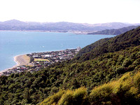 Eastbourne and Hutt River